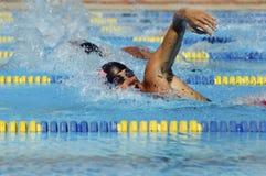 Αρσενικοί κολυμβητές στη λίμνη Στοκ Εικόνα