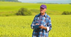 Αρσενικός αγρότης που αναλύει το σίτο κάνοντας την έκθεση φιλμ μικρού μήκους