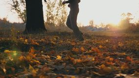 Αρσενικός αθλητής που τρέχει μέσω του πάρκου φθινοπώρου που περπατεί στα ξηρά πεσμένα φύλλα Κατάρτιση τύπων υπαίθρια στο χρόνο ηλ φιλμ μικρού μήκους