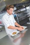 Αρσενικός αρχιμάγειρας που παρουσιάζει τα τρόφιμα στο πιάτο στοκ εικόνες με δικαίωμα ελεύθερης χρήσης