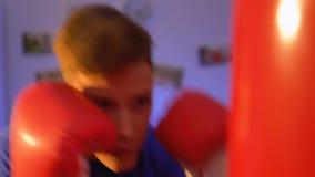 Αρσενικός εγκιβωτισμός εφήβων στο σπίτι στα γάντια, κατάρτιση δύναμης, αθλητικό χόμπι, υγεία απόθεμα βίντεο