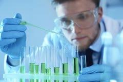Αρσενικός επιστήμονας που εργάζεται με το δείγμα στο εργαστήριο στοκ φωτογραφίες με δικαίωμα ελεύθερης χρήσης