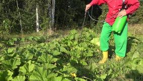 Αρσενικός κήπος συγκομιδών ψεκασμού με τον ψεκαστήρα από το ζιζάνιο στο καλοκαίρι 4K φιλμ μικρού μήκους
