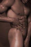 αρσενικός κορμός Στοκ Φωτογραφία