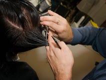 αρσενικός κύριος τριχώματος Στοκ φωτογραφία με δικαίωμα ελεύθερης χρήσης