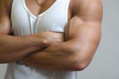αρσενικός μυϊκός κορμός Στοκ φωτογραφία με δικαίωμα ελεύθερης χρήσης