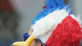 Αρσενικός οπαδός ποδοσφαίρου από τη Γαλλία που φορά το κάλυμμα μασκότ και που απολαμβάνει την αντιστοιχία απόθεμα βίντεο