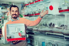 Αρσενικός πελάτης που καυχάται την αγορά του πουλιού καναρινιών στοκ εικόνα