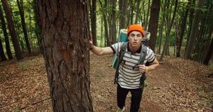 Αρσενικός τουρίστας που πηγαίνει ανηφορικά στο δάσος απόθεμα βίντεο