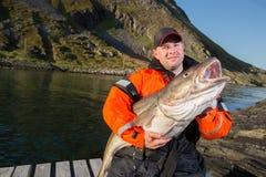 Αρσενικός ψαράς που κρατά έναν τεράστιο βακαλάο ψαριών Στοκ φωτογραφία με δικαίωμα ελεύθερης χρήσης