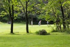 Αρσενικός foursome στην τρύπα γκολφ στο αρκετά αγροτικό παλαιότερο βορειοαμερικανικό γήπεδο του γκολφ στοκ εικόνα