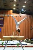 Αρσενικός gymnast που αποδίδει στο άλογο λαβών ξίφους Στοκ Φωτογραφίες
