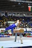 Αρσενικός gymnast που αποδίδει στο άλογο λαβών ξίφους Στοκ Φωτογραφία