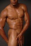 αρσενικός nubian nude Στοκ φωτογραφία με δικαίωμα ελεύθερης χρήσης