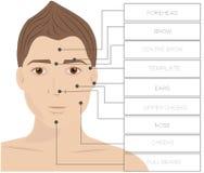 Αρσενικό αφαίρεσης τρίχας λέιζερ Depilation προσώπου περιοχής άτομο απεικόνιση αποθεμάτων