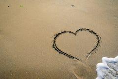 Αρσενικό ελάφι στην άμμο που πλένεται από τα κύματα Στοκ Φωτογραφίες