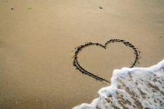 Αρσενικό ελάφι στην άμμο που πλένεται από τα κύματα Στοκ Εικόνα