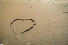 Αρσενικό ελάφι στην άμμο που πλένεται από τα κύματα Στοκ Εικόνες