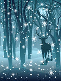 Αρσενικό ελάφι στο χειμερινό δάσος Στοκ Εικόνα