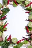 αρσενικό (ζώο) συστατικών yum Στοκ εικόνα με δικαίωμα ελεύθερης χρήσης