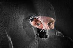 Αρσενικό (ζώο) τιτιβίσματος Στοκ φωτογραφίες με δικαίωμα ελεύθερης χρήσης