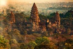 αρσενικό (ζώο) angkor στοκ φωτογραφίες