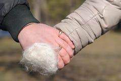Αρσενικό και θηλυκό χέρι Στοκ Εικόνα
