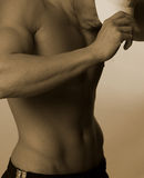 αρσενικό λευκό ΚΑΠ στοκ εικόνες με δικαίωμα ελεύθερης χρήσης