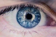 Αρσενικό μπλε μάτι Στοκ εικόνα με δικαίωμα ελεύθερης χρήσης