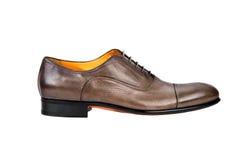 Αρσενικό παπούτσι-2 Browm Στοκ Εικόνα