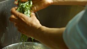 Αρσενικό estragon πλύσης χεριών απόθεμα βίντεο