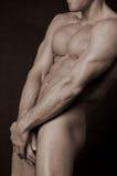 αρσενικό nude Στοκ Εικόνες