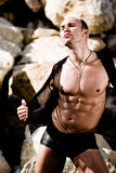 αρσενικό stripper Στοκ εικόνες με δικαίωμα ελεύθερης χρήσης