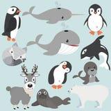 Αρτική συλλογή κινούμενων σχεδίων ζώων στοκ φωτογραφία