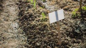 Αρχίζει του αγροκτήματος Στοκ φωτογραφία με δικαίωμα ελεύθερης χρήσης