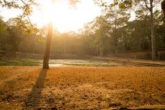 Αρχαία λίμνη νερού σε Angkor Thom, Καμπότζη Στοκ φωτογραφία με δικαίωμα ελεύθερης χρήσης