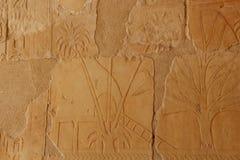 Αρχαία ανακούφιση στον τοίχο του ναού Hatshepsut σε Thebes/Luxor στην Αίγυπτο, κοντά στην κοιλάδα των βασιλιάδων με την εικόνα Στοκ Εικόνα