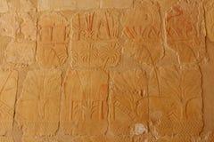 Αρχαία ανακούφιση στον τοίχο του ναού Hatshepsut σε Thebes/Luxor στην Αίγυπτο, κοντά στην κοιλάδα των βασιλιάδων με την εικόνα Στοκ Εικόνες