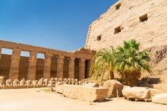 Αρχαία αρχιτεκτονική του ναού Karnak σε Luxor Στοκ φωτογραφίες με δικαίωμα ελεύθερης χρήσης