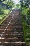αρχαία βήματα βράχου παλατιών φρουρίων Στοκ Φωτογραφίες