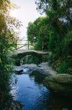 Αρχαία γέφυρα πετρών στην πορεία fom Monterosso σε Vernazza Φυσική άποψη με την άνοιξη βουνών στο πρώτο πλάνο Το Cinque Terre είν στοκ φωτογραφίες με δικαίωμα ελεύθερης χρήσης