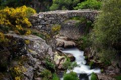 αρχαία γέφυρα Ρωμαίος στοκ φωτογραφία