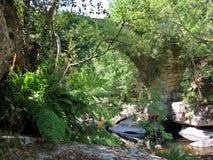 αρχαία γέφυρα Ρωμαίος Στοκ Φωτογραφίες