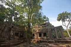 Αρχαία καταστροφή του ναού TA Phrom, Angkor Wat Καμπότζη Στοκ φωτογραφίες με δικαίωμα ελεύθερης χρήσης