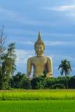 Αρχαία μεγάλη εικόνα του Βούδα στον τομέα στο ναό Muang, ANG Thon Στοκ Φωτογραφίες