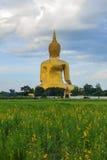 Αρχαία μεγάλη εικόνα του Βούδα στον τομέα στο ναό Muang, ANG Thon Στοκ φωτογραφία με δικαίωμα ελεύθερης χρήσης