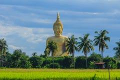 Αρχαία μεγάλη εικόνα του Βούδα στον τομέα στο ναό Muang, ANG Thon Στοκ φωτογραφίες με δικαίωμα ελεύθερης χρήσης