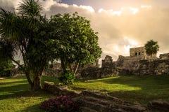 Αρχαία περιοχή της Maya Archeological Tulum Yucatan Μεξικό Στοκ εικόνα με δικαίωμα ελεύθερης χρήσης