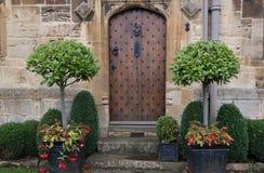 Αρχαία πόρτα με τα δέντρα κιβωτίων Στοκ εικόνες με δικαίωμα ελεύθερης χρήσης