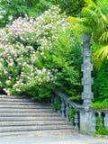 Αρχαία σκάλα πετρών Στοκ εικόνες με δικαίωμα ελεύθερης χρήσης
